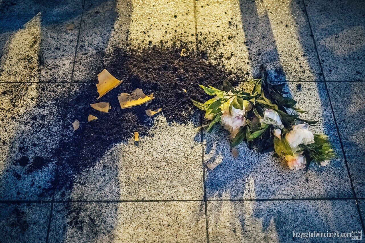 Zdjęcie do spektaklu Epitafium dla władzy. Na zdjęciu kwiat, rozsypana ziemia i rozbita na betonie doniczka.