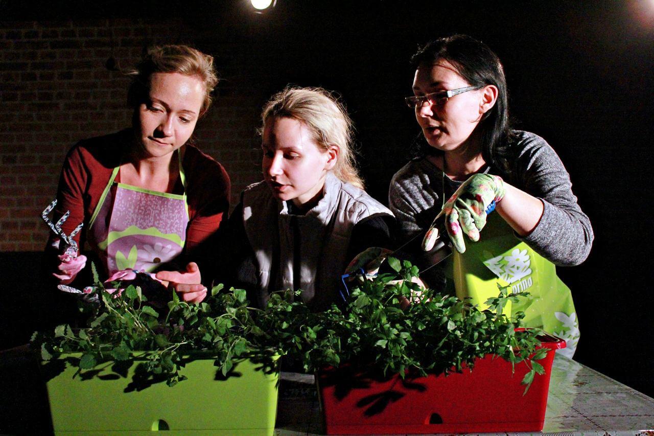 Zdjęcie z projektu Dzielnica cudów. Trzy aktorki pochylone nad doniczkami z roślinami.